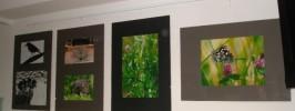 »Ujeti trenutki« -  odprtje fotografske razstave Marjetke Erman